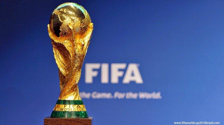فيفا: المشجعون يفضلون إقامة كأس العالم كل عامين